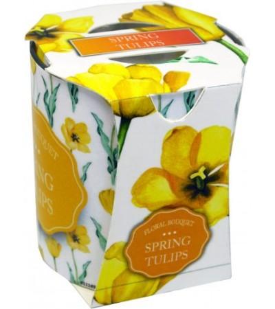 Sviečka aromatická VERONA spring tulips